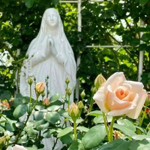 バラとマリア像2